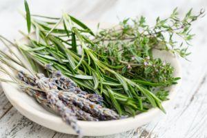 Veggi Palate Herbs Thyme