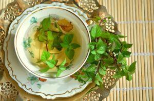 Veggi Palate Herbs Mint